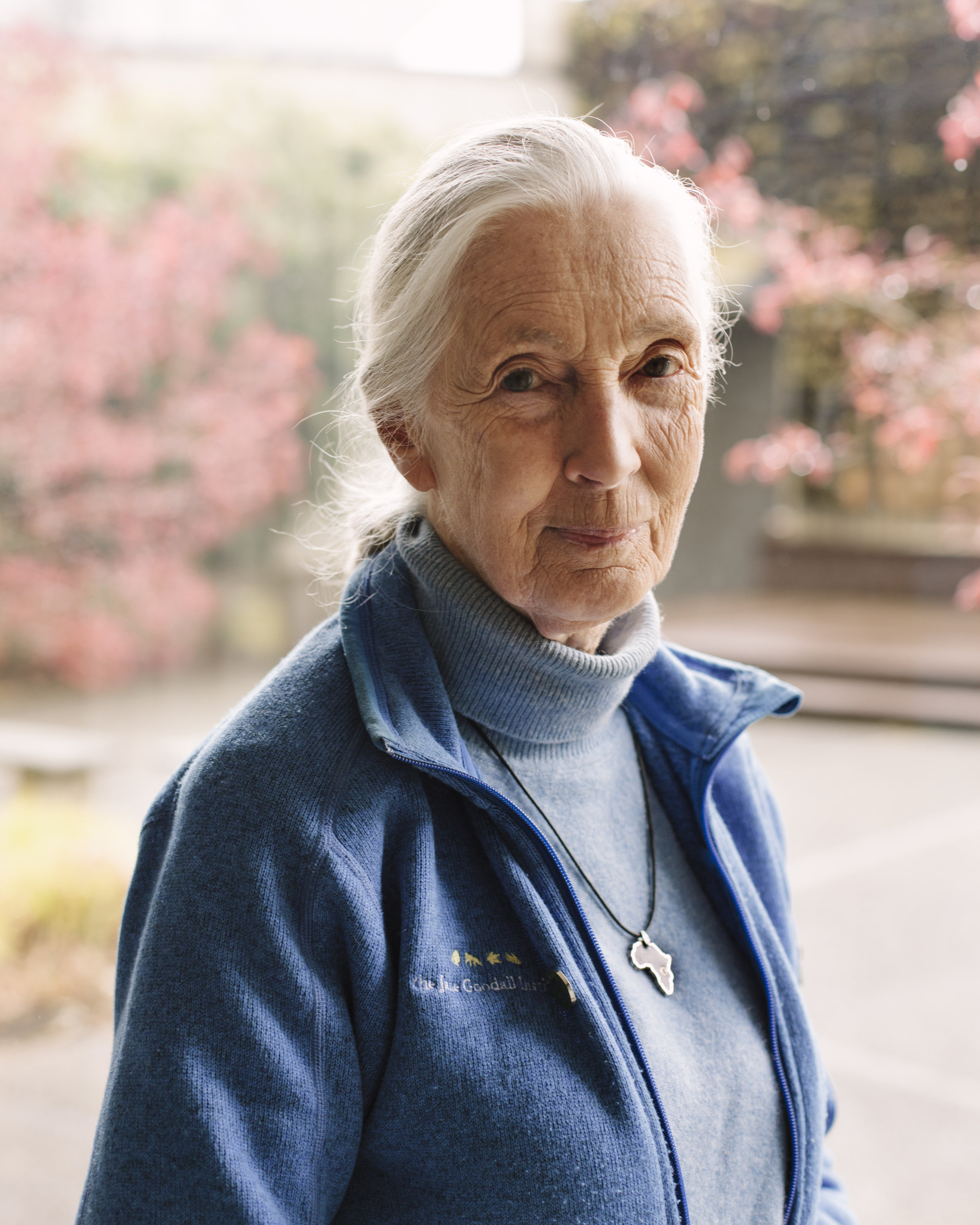 jane-goodall-final-final-0003.jpg