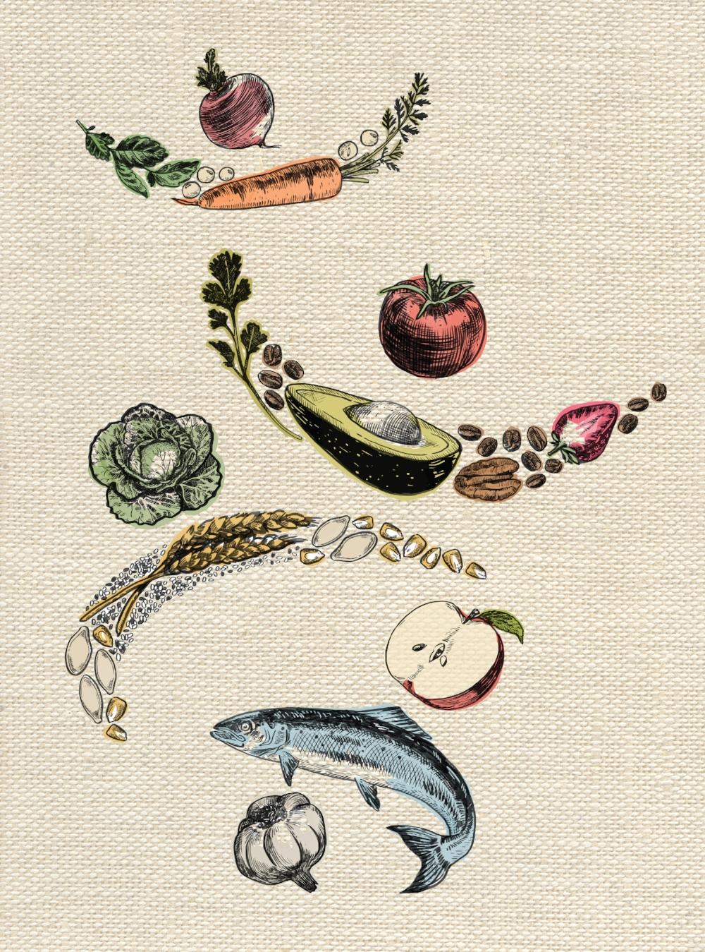 Illustrated Food Logo