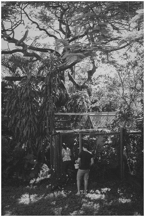 Maternity_Photography_Brisbane_Rose_Hewartson002.jpg