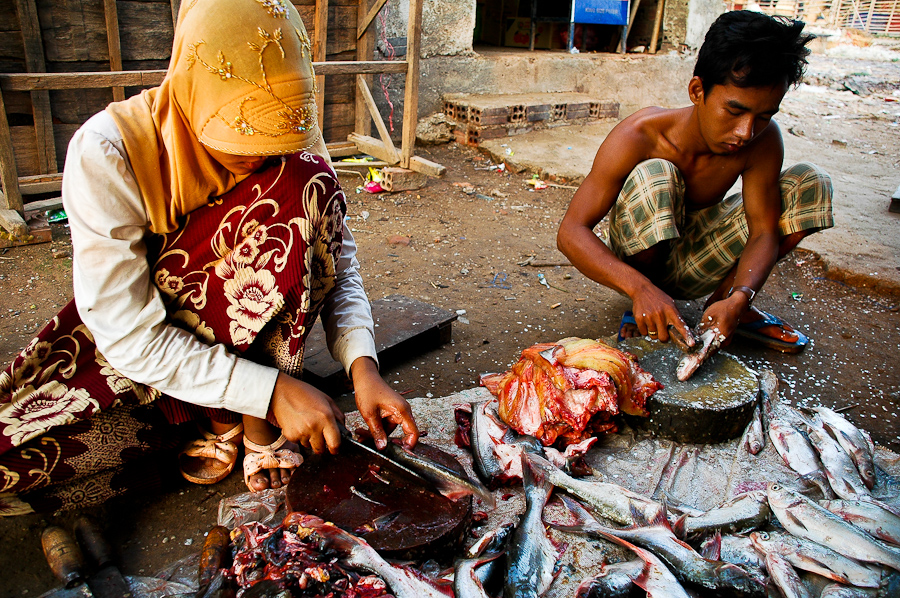 Members of a Cham Muslim family clean fish in a village near Phnom Penh. Many people in Cambodia's Cham minority community make a living fishing.