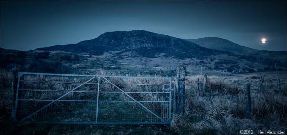 Moonlit gate