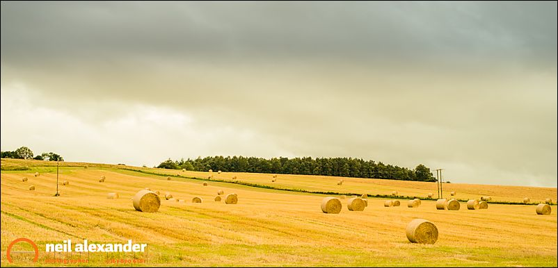 Straw Bales near Comrie, West Dunbartonshire
