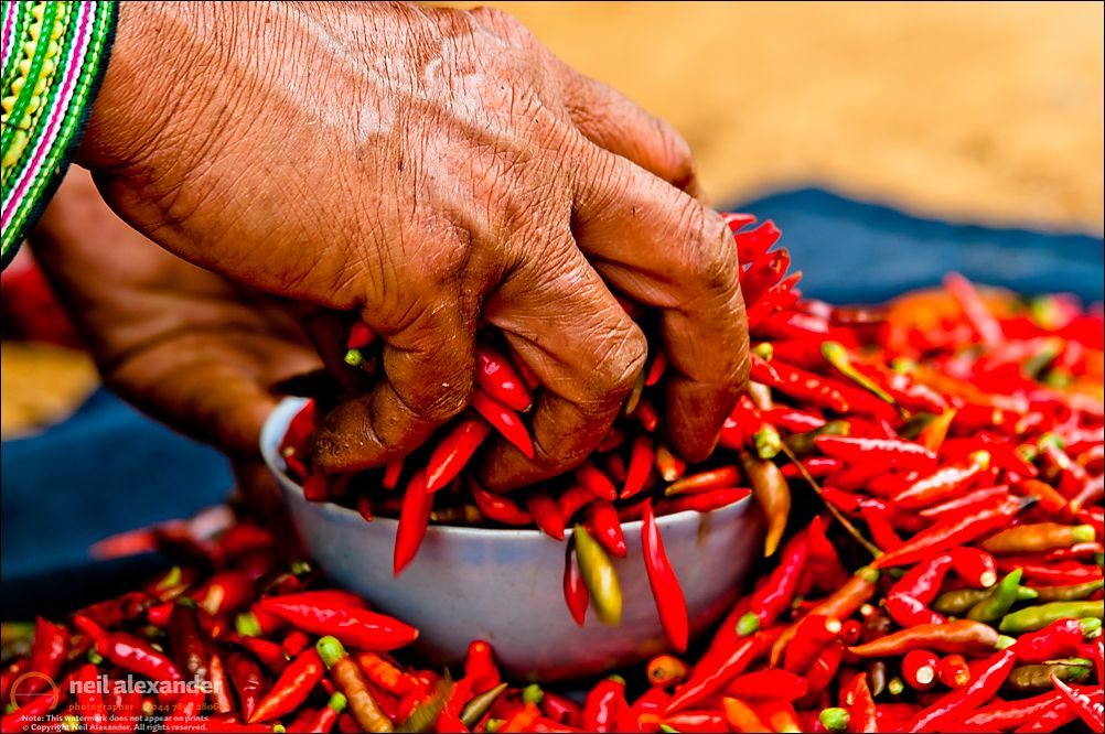 Woman holding red chillies, Can Cau market, Sapa,Vietnam