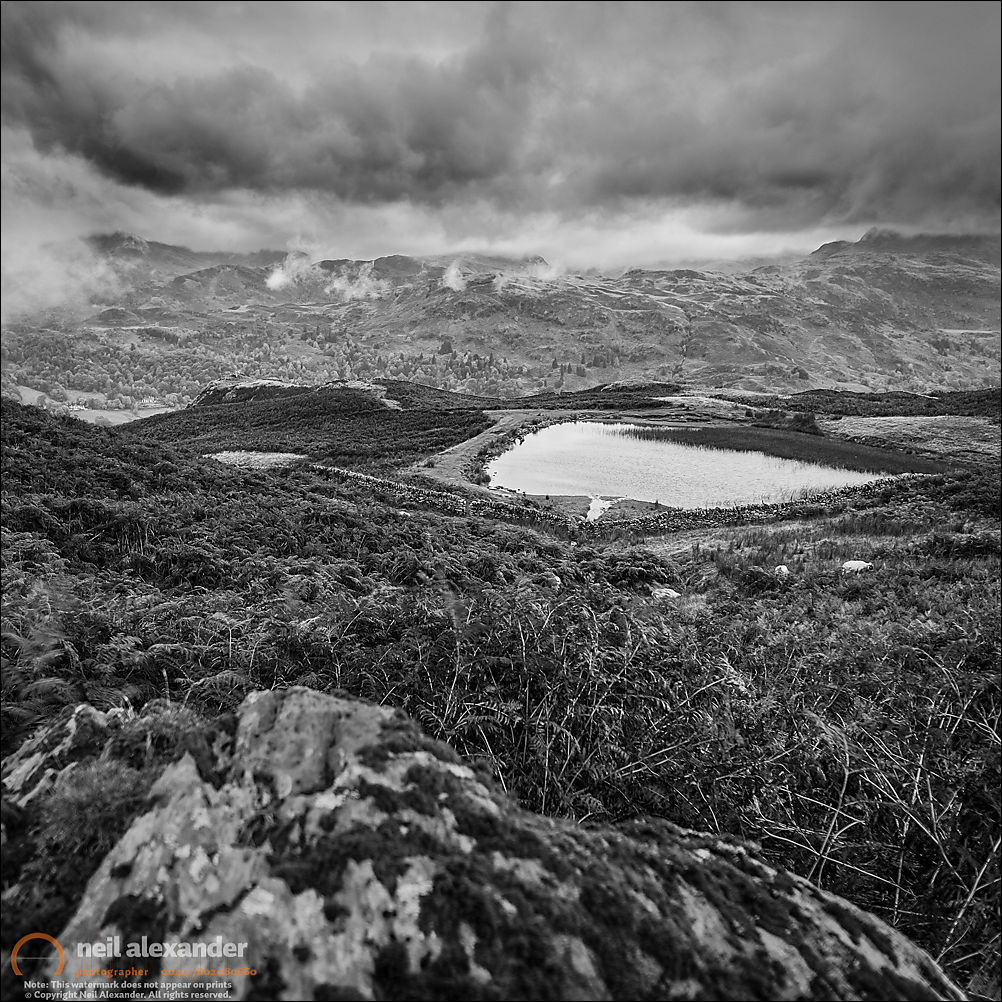 Overlooking Alcock Tarn in the Lake District