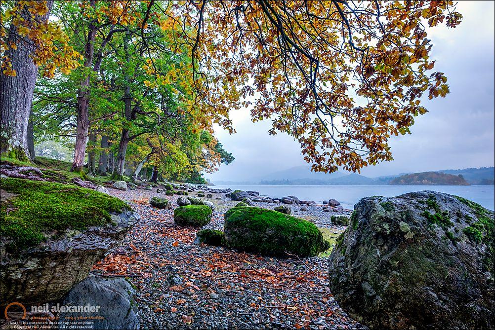 Autumnal Derwent Water shoreline