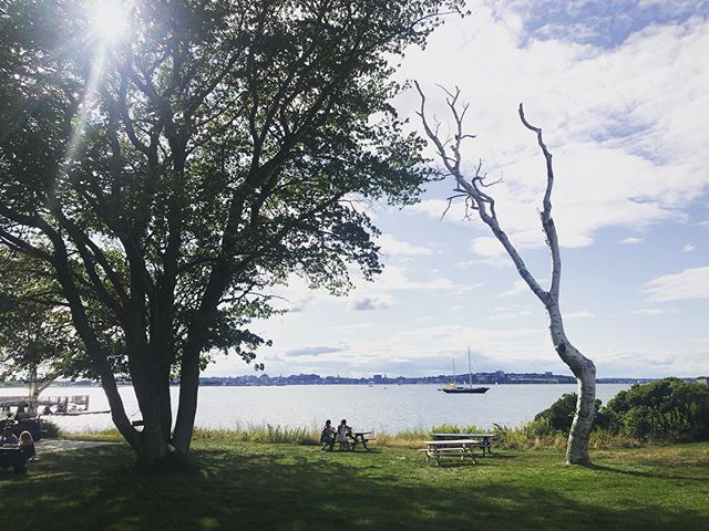 Some work days are easier than others #houseislandmaine w x@medianortheast