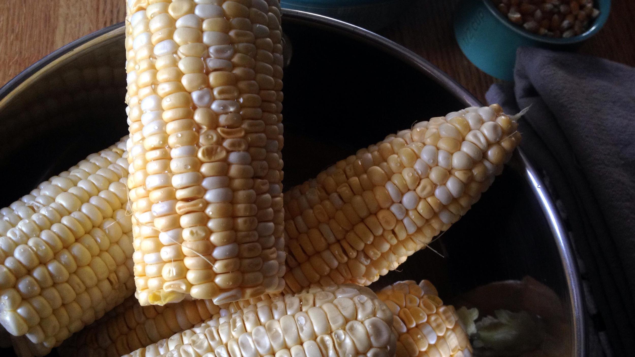 fresh shucked corn