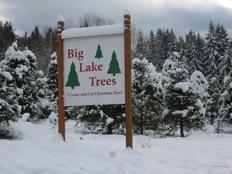 Big Lake Trees Sign Circa 1985