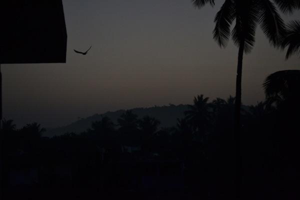 Sunrise - Arambol, Goa