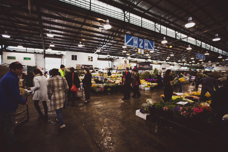 Flower Markets _ LR-3.jpg