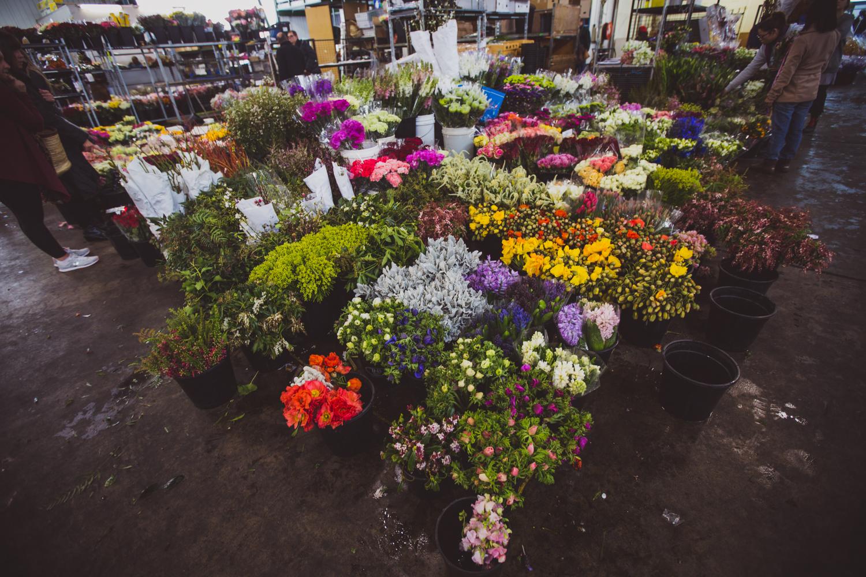 Flower Markets _ LR-13.jpg