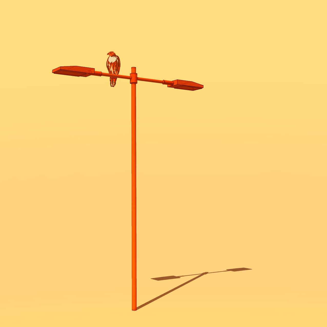 A hawk perched on a street light.