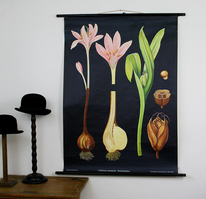 would love this poster but at $233 not cheep. Pay for what you get in life. It is a beautiful piece