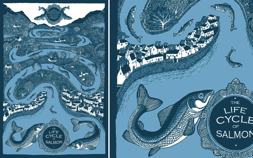 My favourite print. Life cycle of a salmon