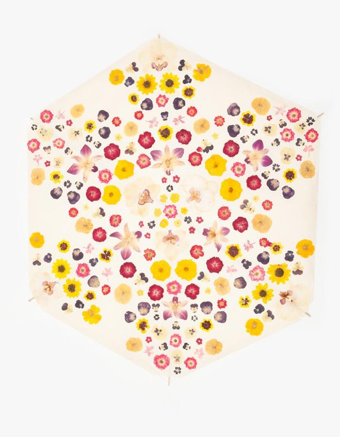 Floralia Hex- Fredericks & Mae