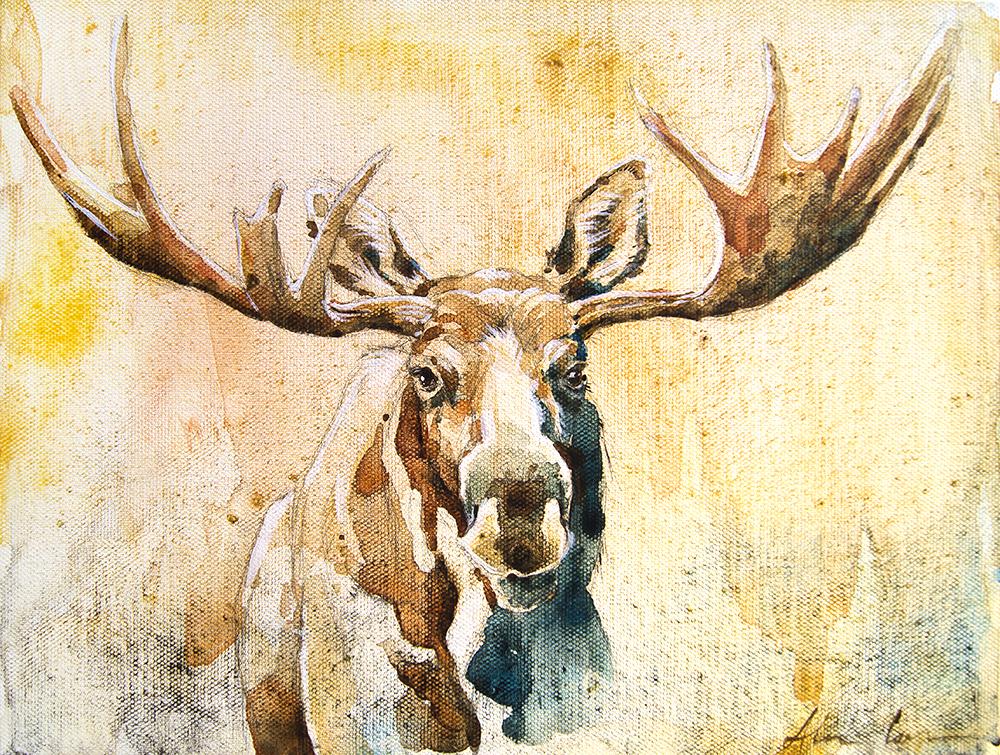 moose1-sm.jpg