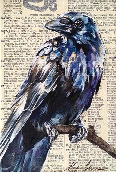 raven-sm.jpg