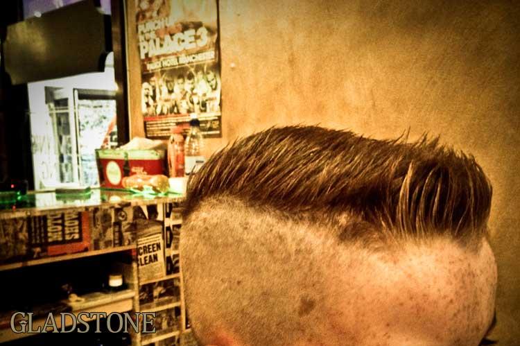 Gladstone-Grooming-Blog_Template.jpg