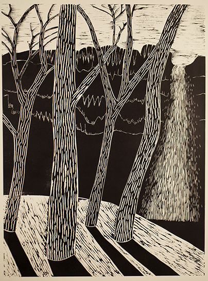 """Trees and Waterfall 2""  Linocut print  24""x 18""  2012"
