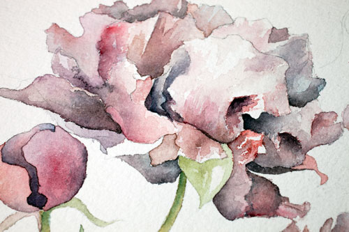 magnolia-detail.jpg