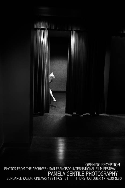 Invite_©PamelaGentile_Kabuki Show_Volunteer' s Leg_.jpg