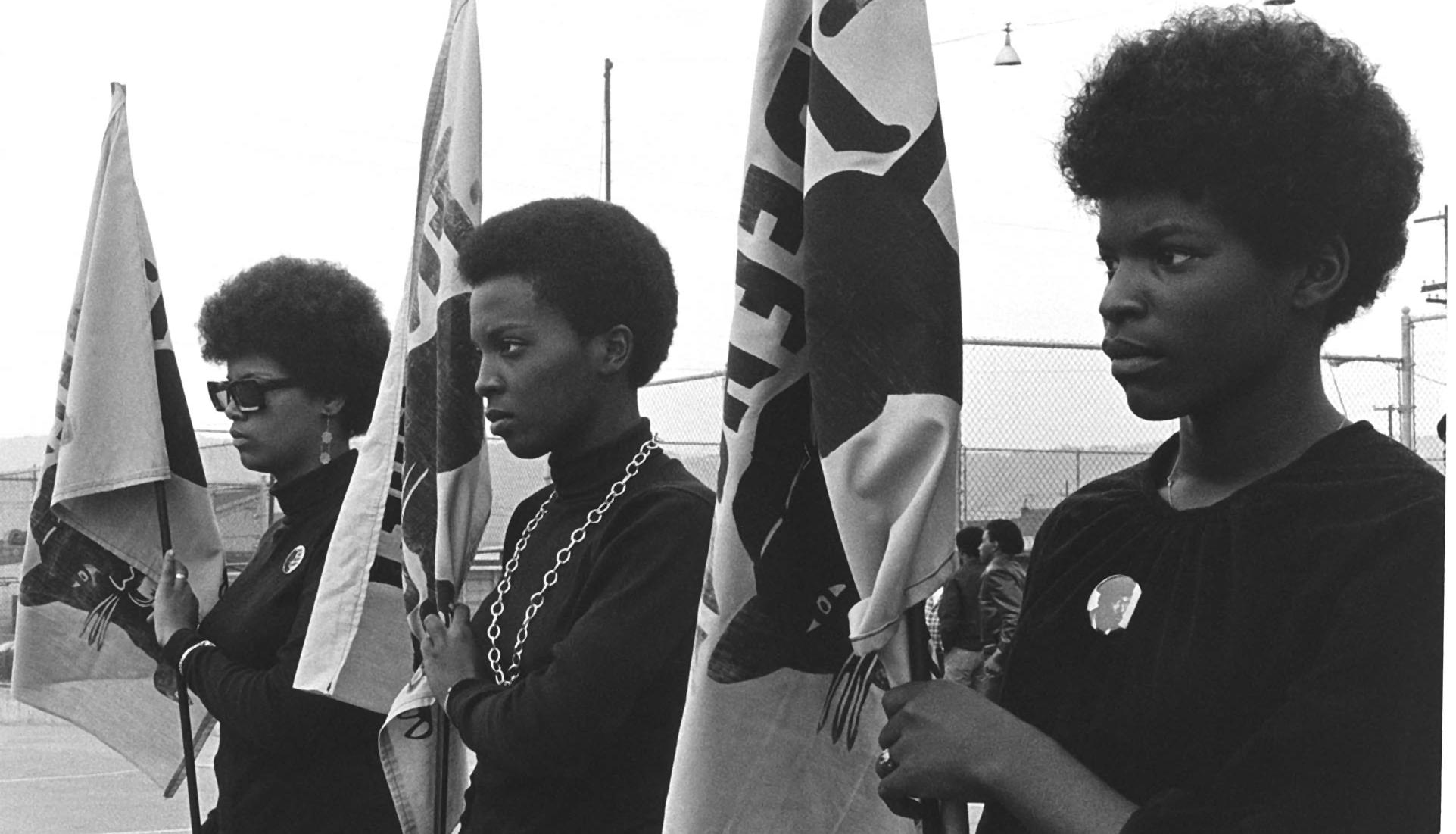 Black Panthers: Vanguard of a Revolution
