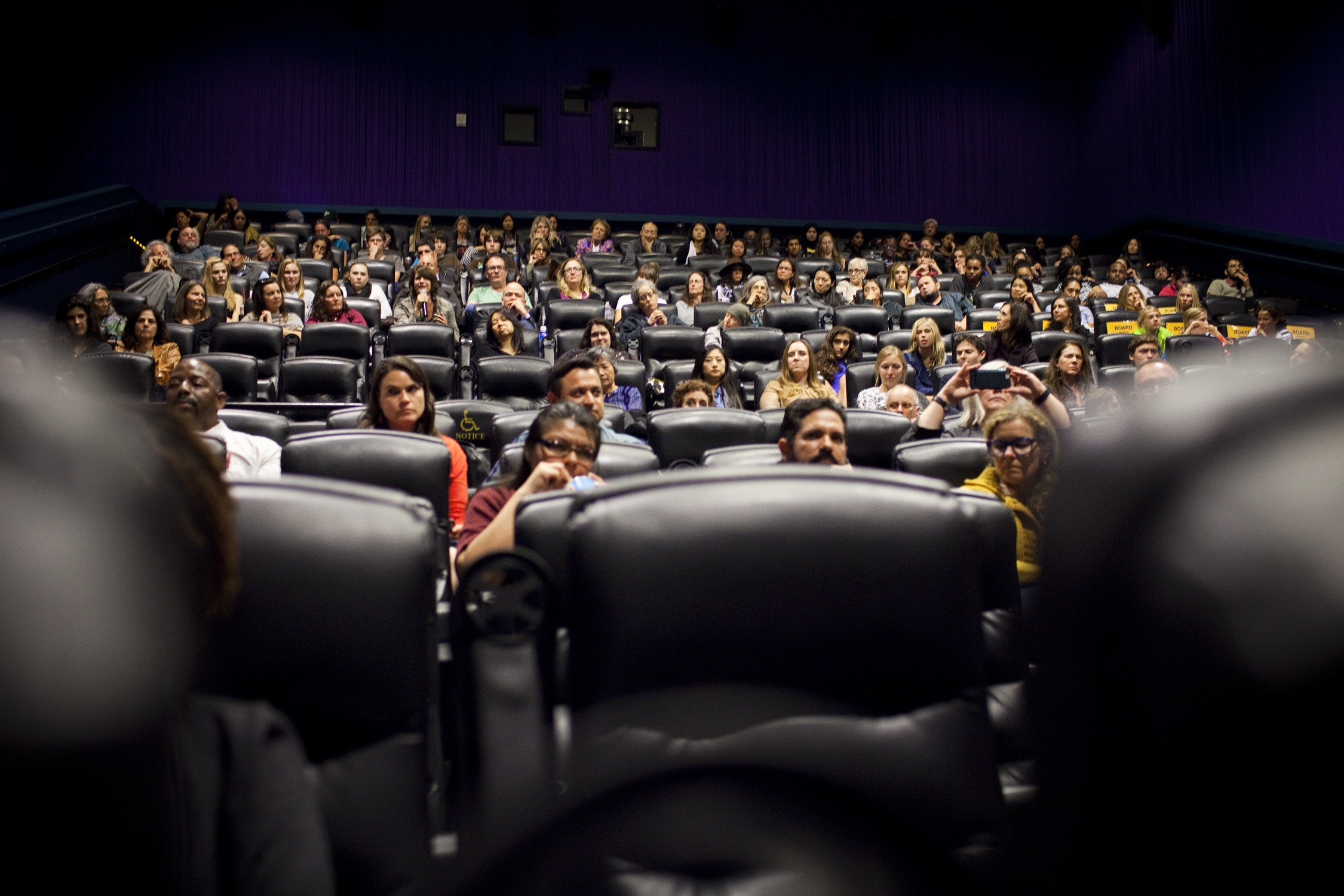 Audience at Our Screening Event