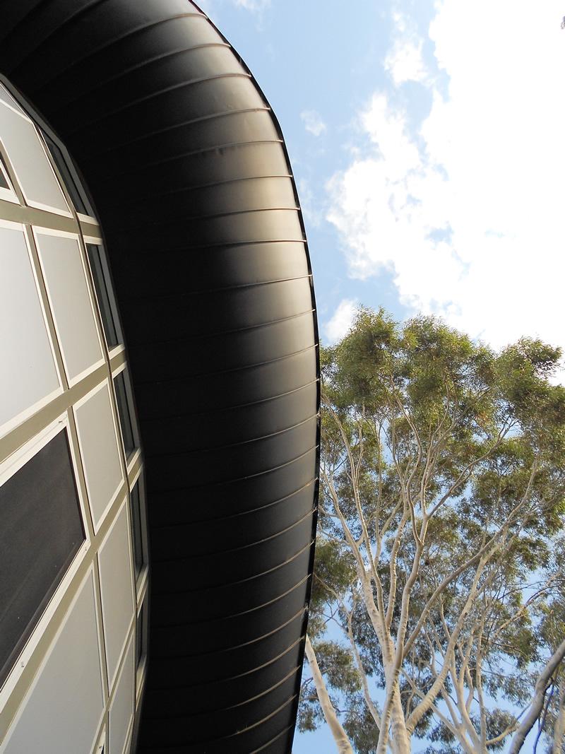 blue fruit design zinc soffit with gum trees contemporary australian architecture.jpg