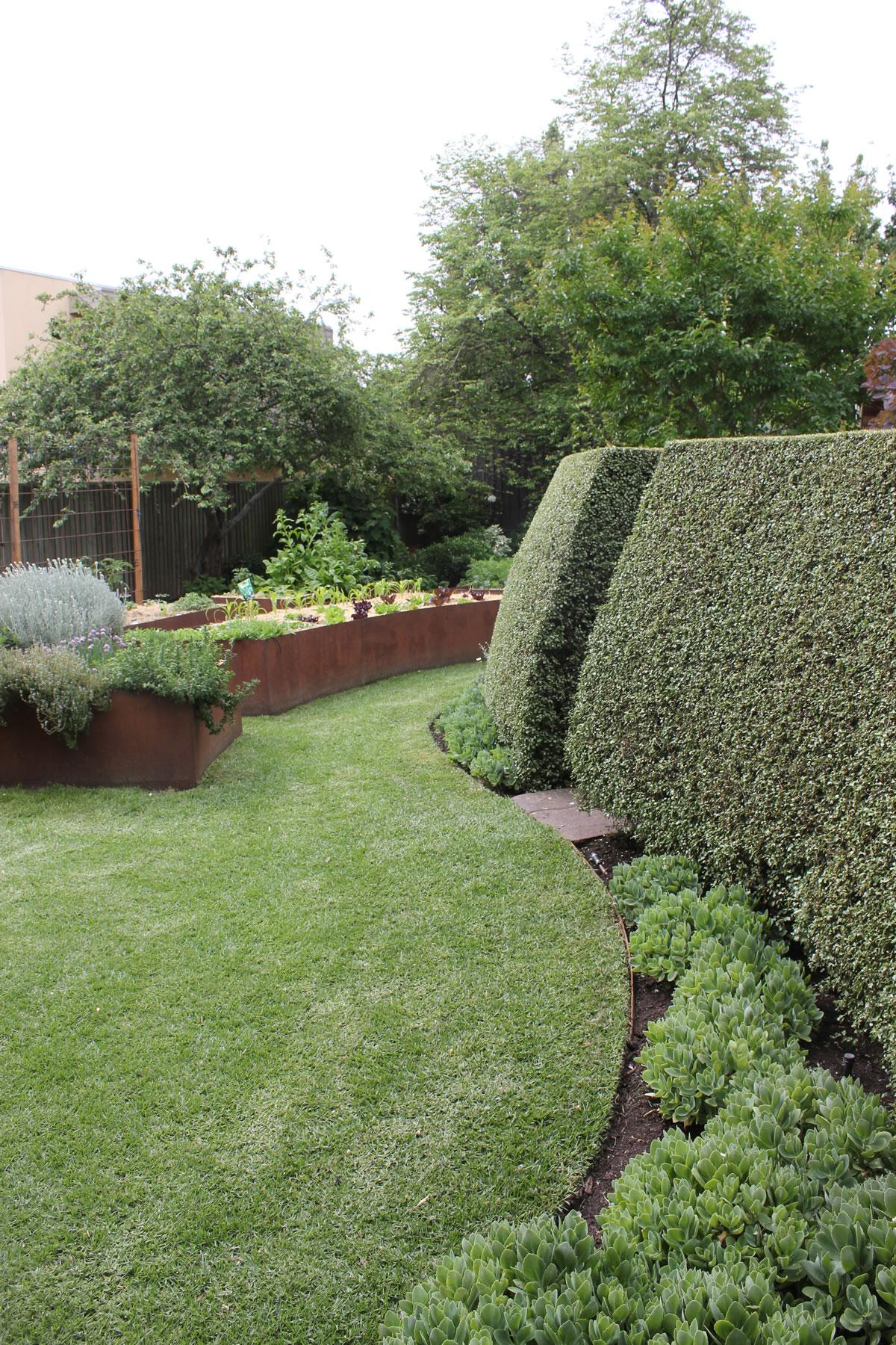 f04ae-hedgehedge.jpg