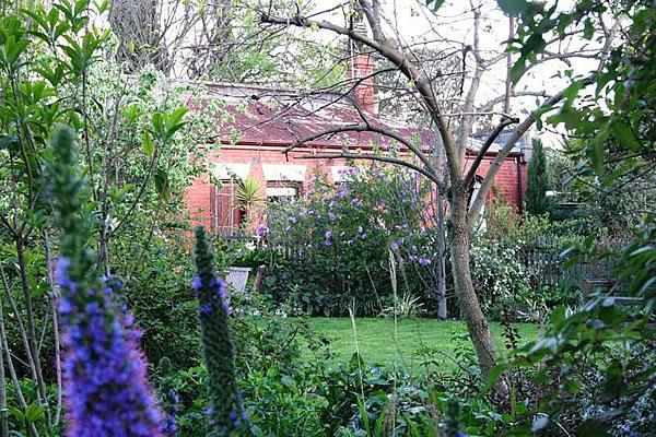 6eeb4-cottagegarden21isabellagrovehawthorn.jpg