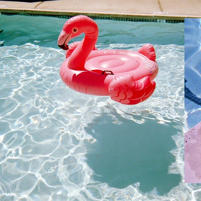 "My boss gave me an expired underwater Fuji disposable 35mm camera. The girls had no idea what this ""film"" thing was and why they couldn't see the pictures instantly. We then paid $16 dollars to send the camera away and waited 8 days to see what we shot at the pool. The results were downright nostalgic and needed no filtering. Made me miss the good old days. #35mm #fujifilm #petaluma #summertime"
