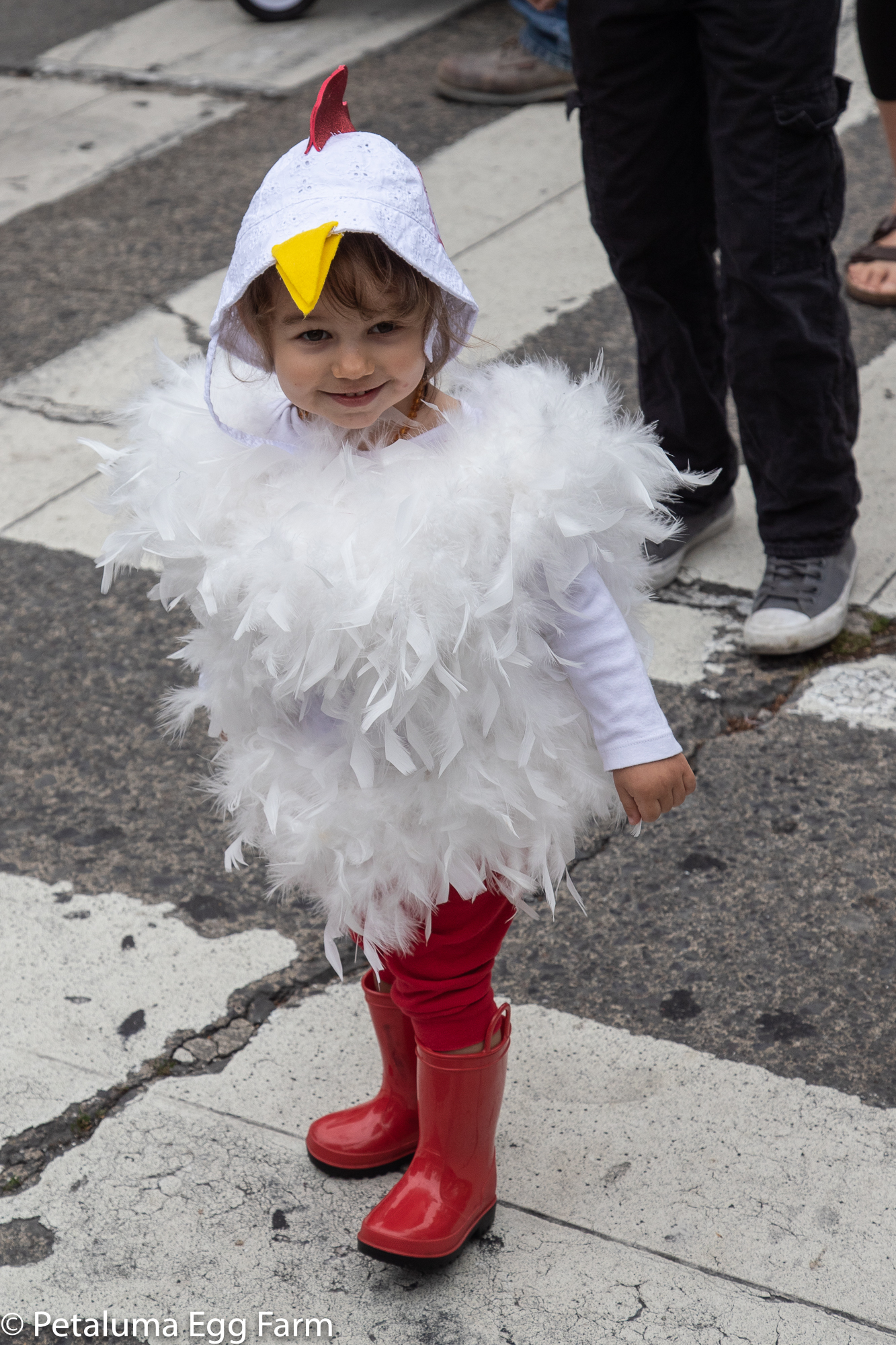 cutest chick 2018 - 2000px-2527.jpg