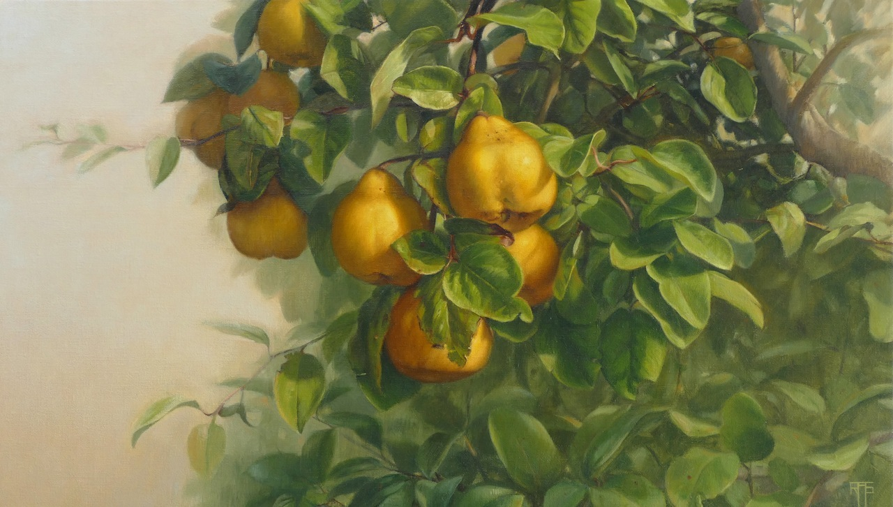 Quinces. Oil on linen. 40x70cm. Available at Arcadia Gallery