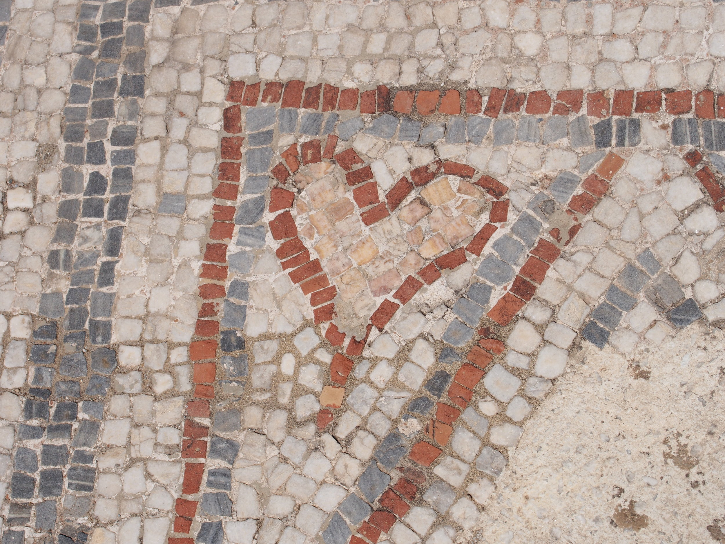 Mosaic uncovered in Ancient Ephesus