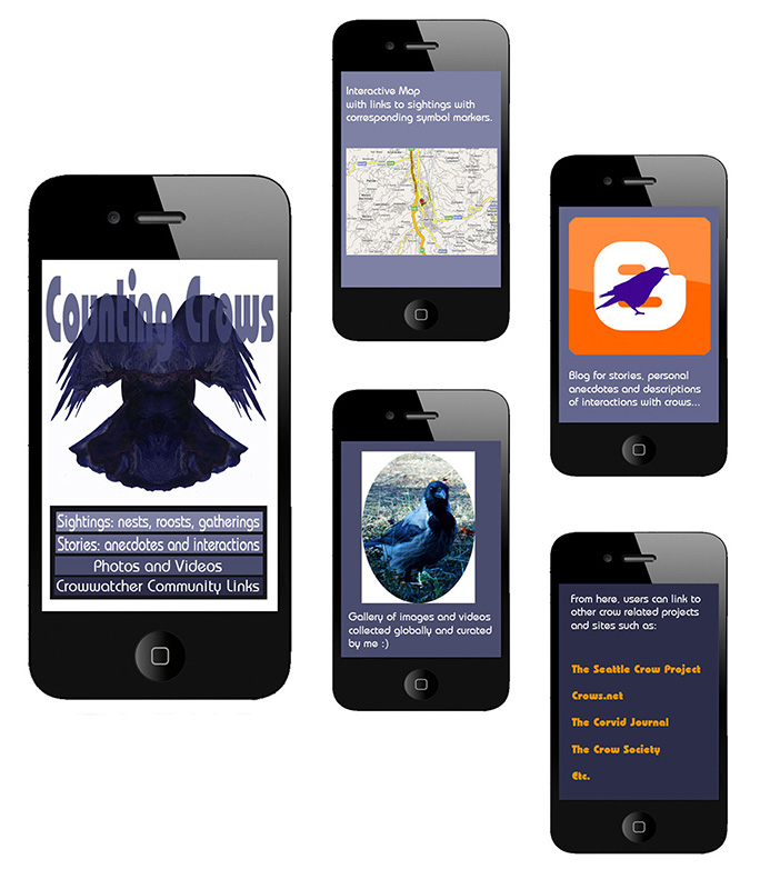Counting Corvids Smartphone App