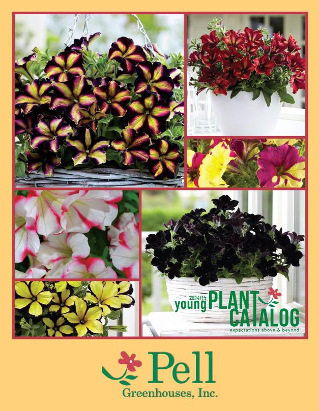 Pell 14 catalog.jpg