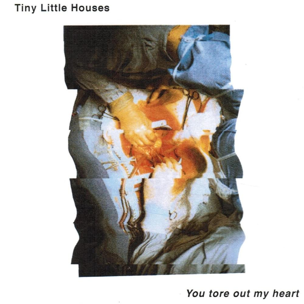 Track 7 - (23:14) Tiny Little Houses - Soon we won't exist