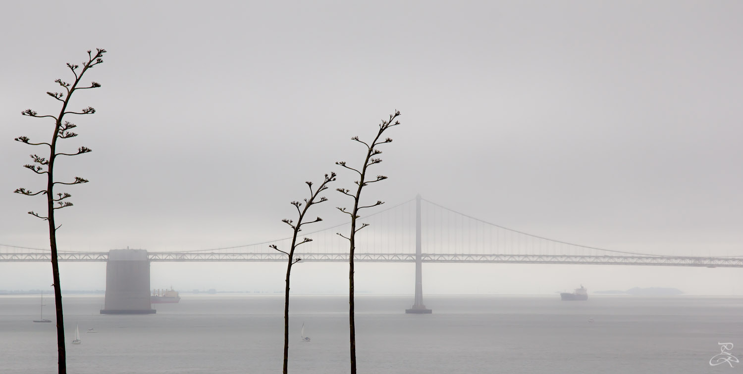 Bay bridge from Alcatraz, San Francisco, CA