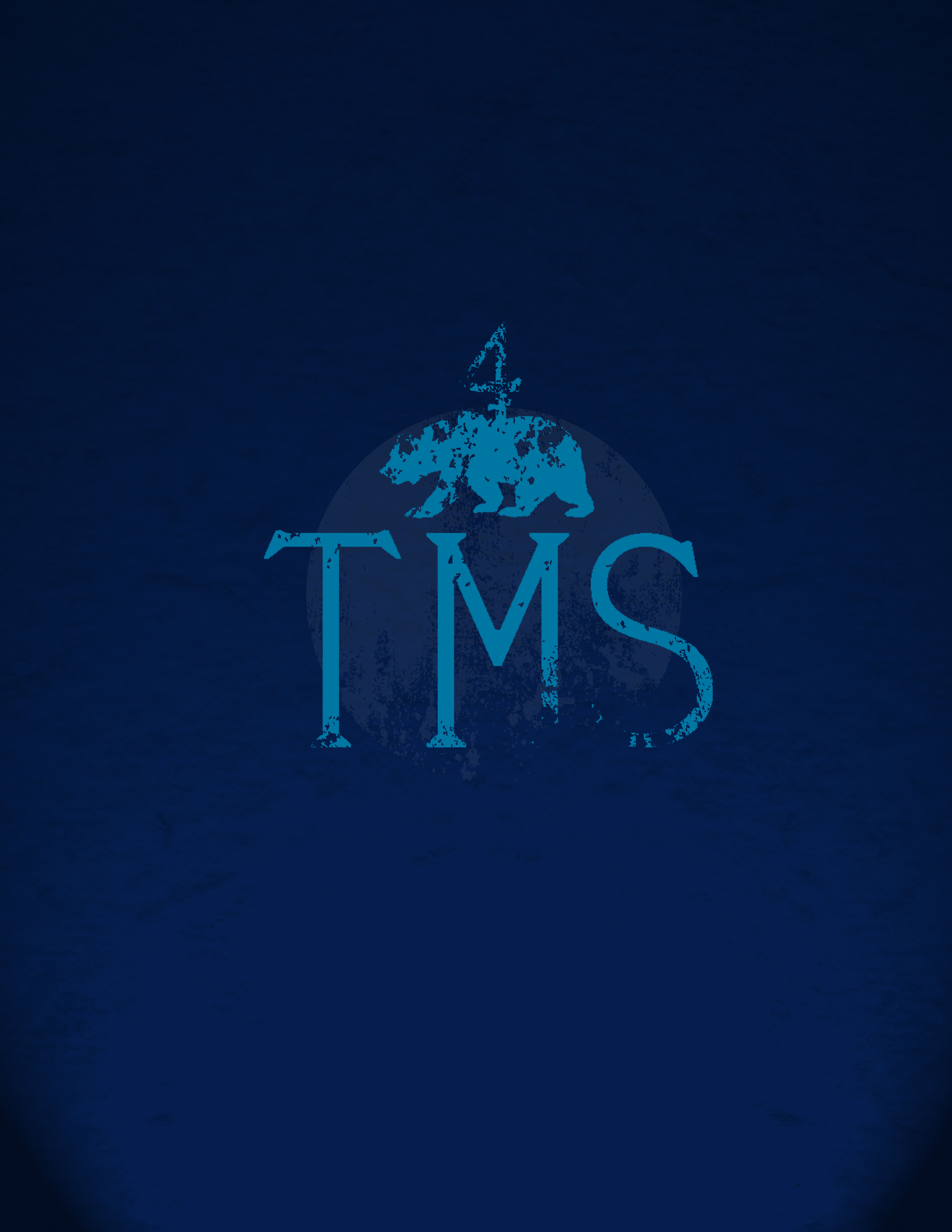 tms 5 worn_blue2.jpg