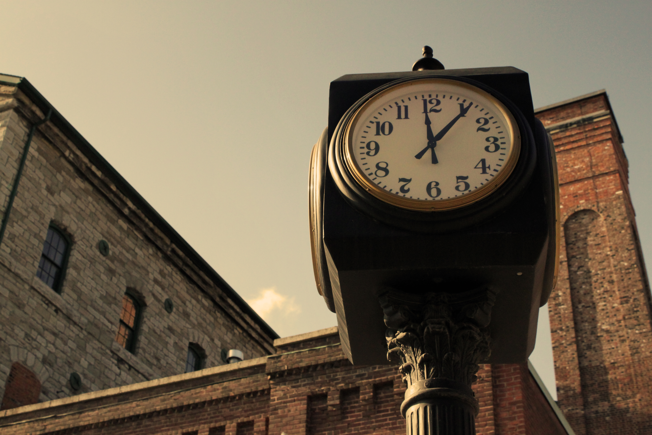 Tale as Old as Time - ©Amanda Benincasa