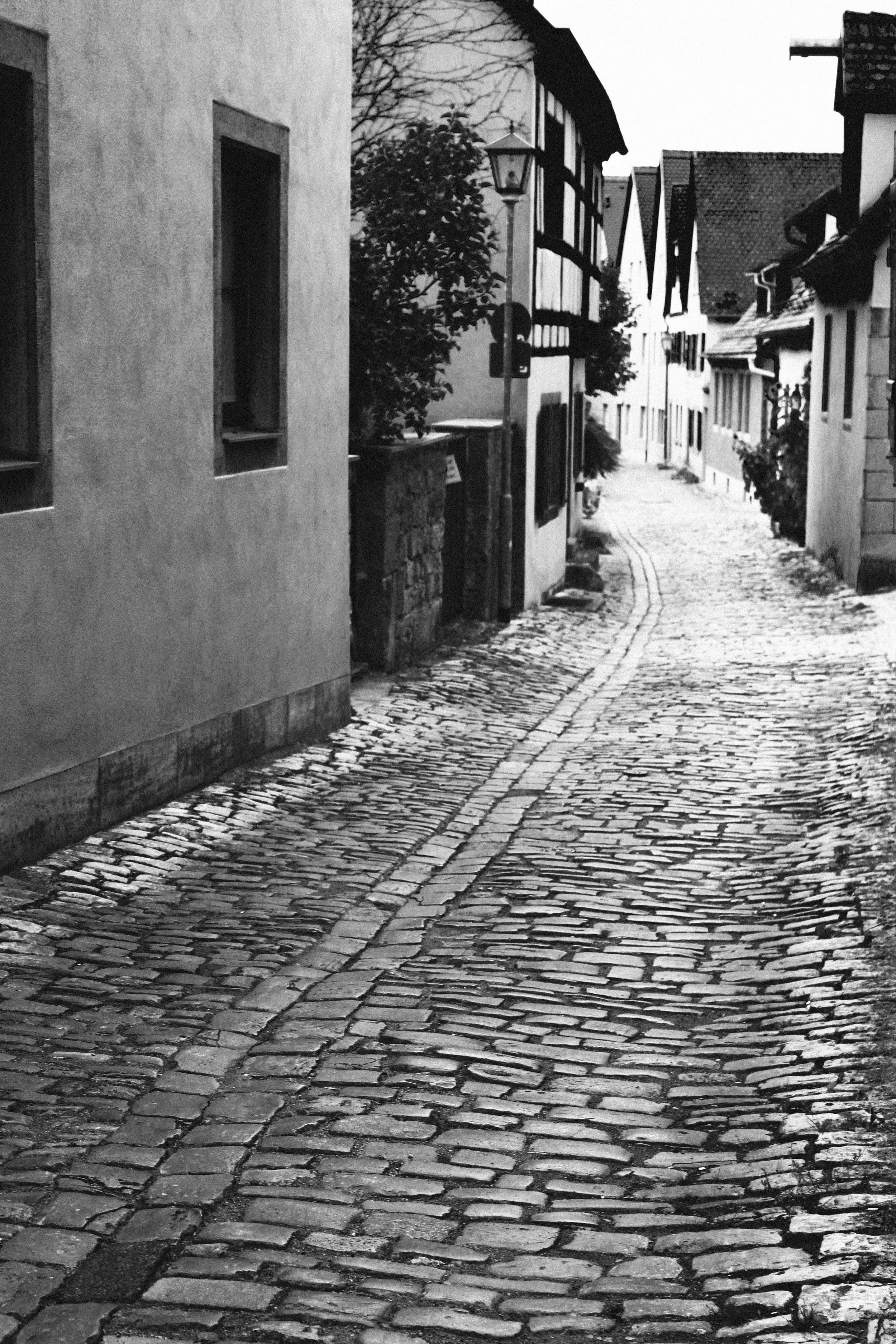The Narrow Road - ©Amanda Benincasa