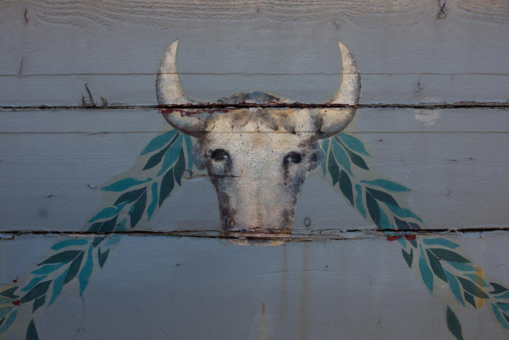 A painting of a bull