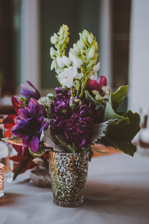 purple flowers amber gress