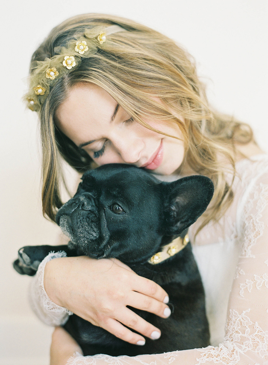 gold flower stud dog collar hushed commotion close.jpg