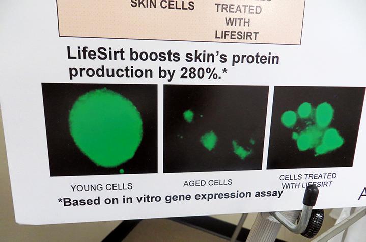 Esta gráfica  que muestra las células jóvenes, las células a medida que envejecen y  las células que han sido NUTRIDAS con LifeSirt componente derivado del  mirto mediterráneo fue reveladora para mí. Empecé de inmediato a  utilizar el Youth Xtend Serum y en dos semanas me ha cambiado la piel.  La producción de proteínas se estimula en un 280%.