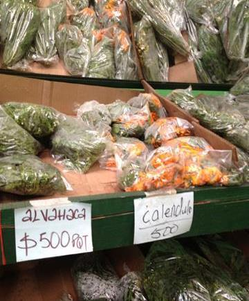Calendula fresca en nuestros mercados Colombianos