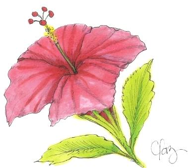 flor-rosa copy.jpg