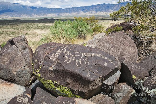 Three Rivers Petroglyph