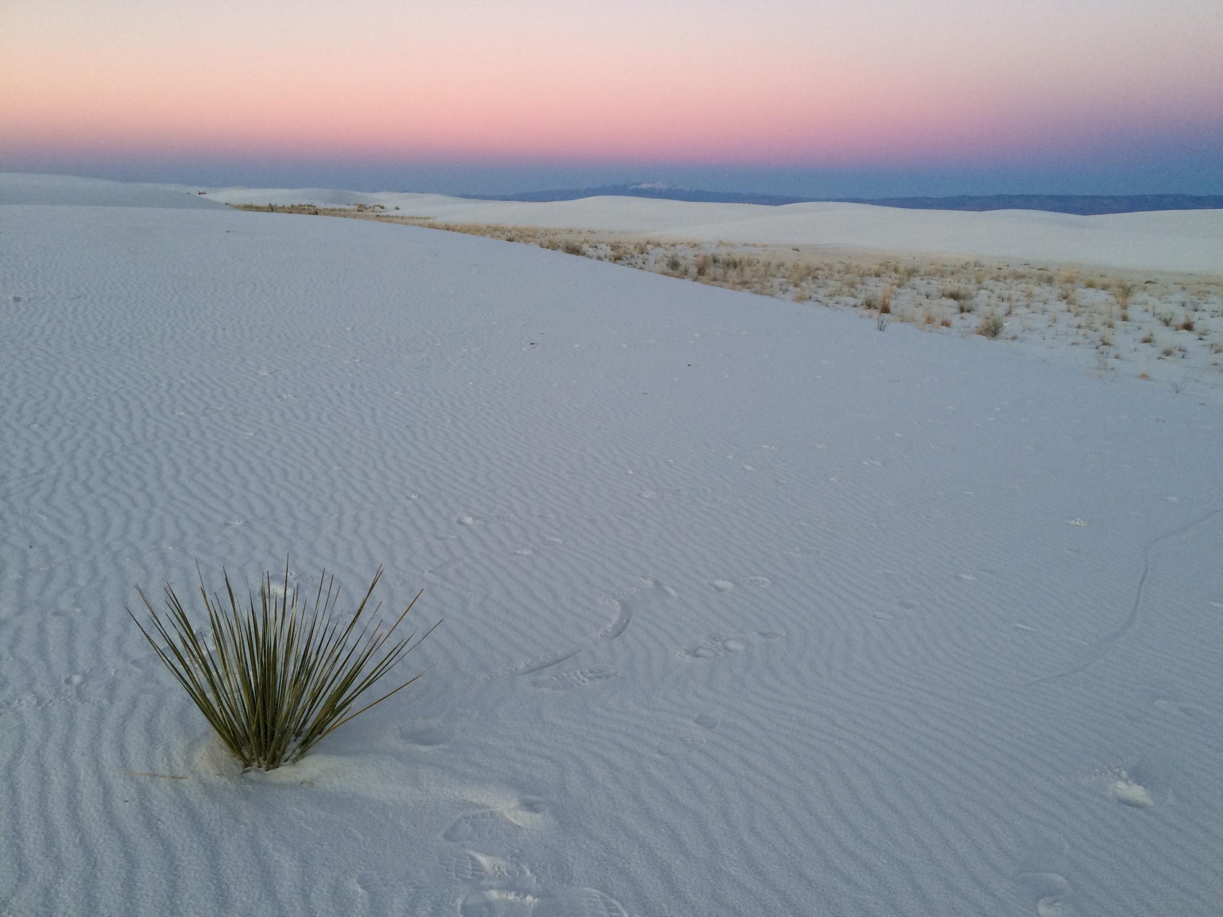 Tularosa, NM - White Sands Desert - photo by Leilani Himmelstein