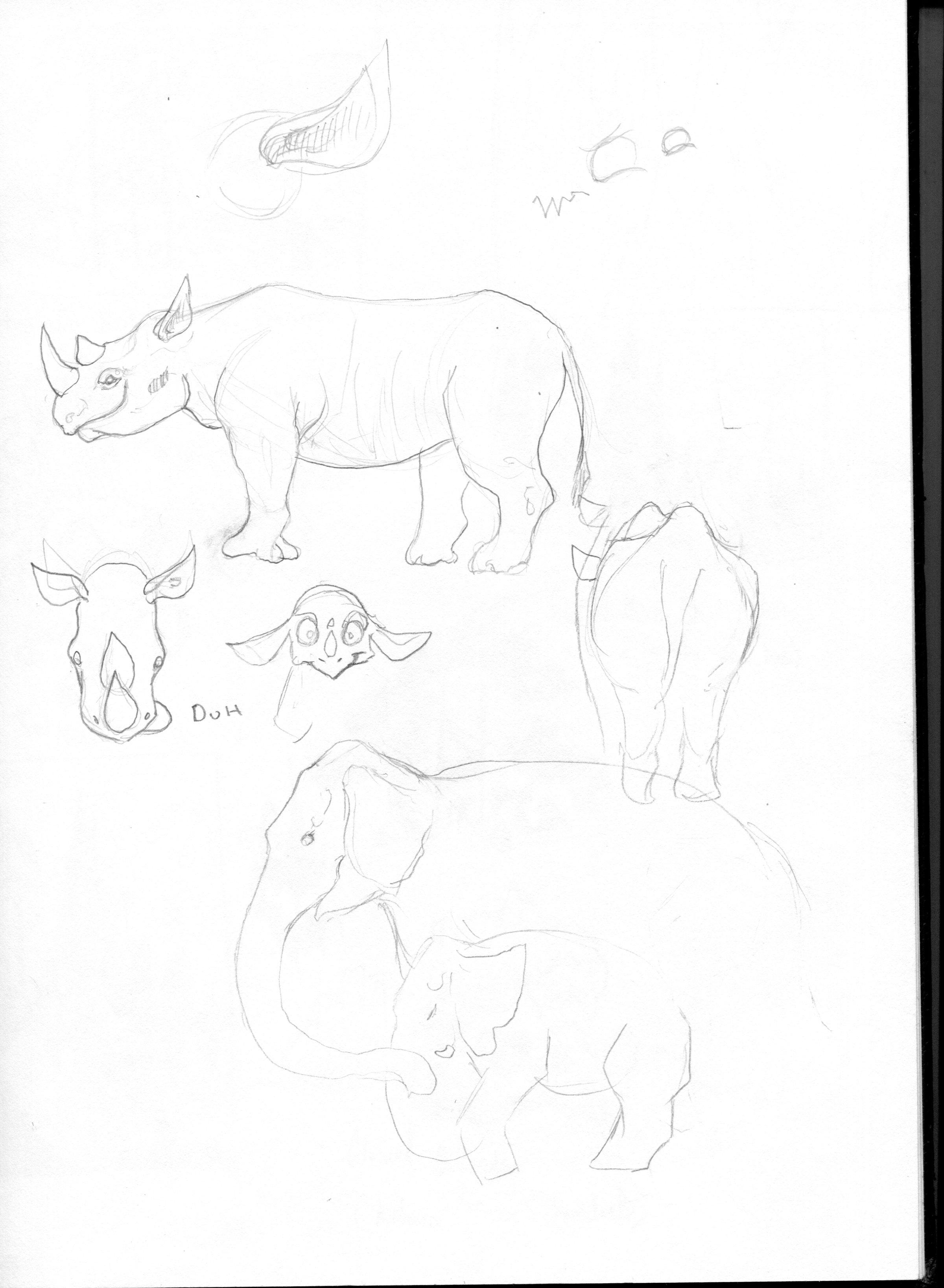 animals019.jpg
